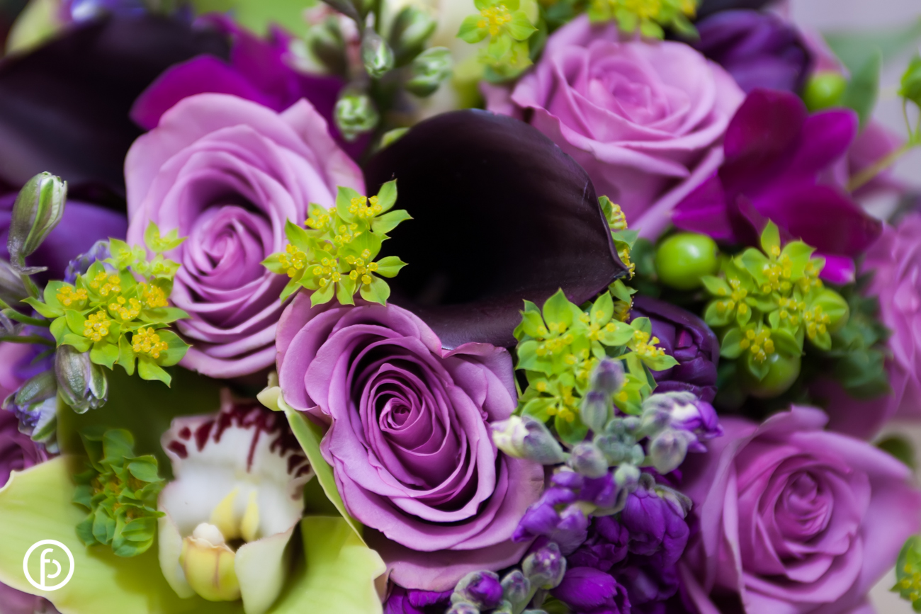 purple and green flowers